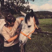 Mon cheval a mal au dos ? Les signes à reconnaitre pour avoir le bon réflexe chiro !